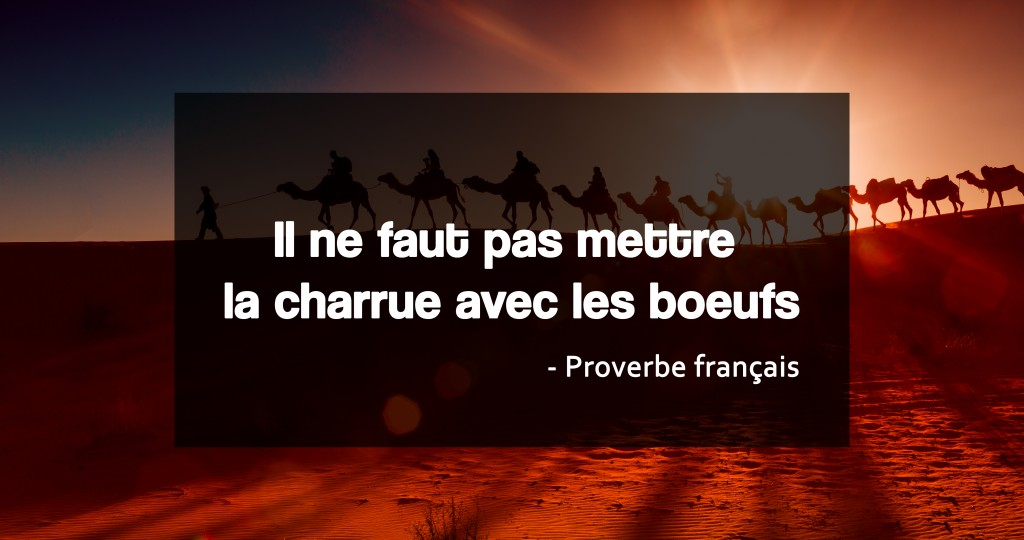 proverbe citation entreprendre